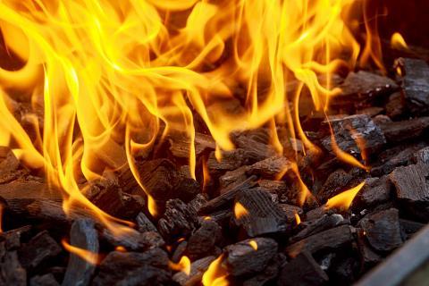 Coal Fuel