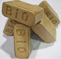 BioBricks